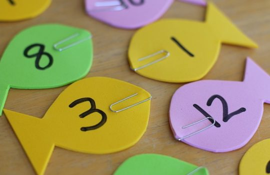 Pažindiname vaiką su skaičių pasauliu (Matematikos pradmenys)